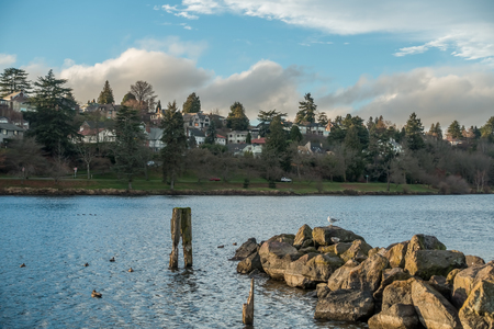 washington landscape: Urban landscape of Lake Washington near Seattle with a small jetty, birds and residences.