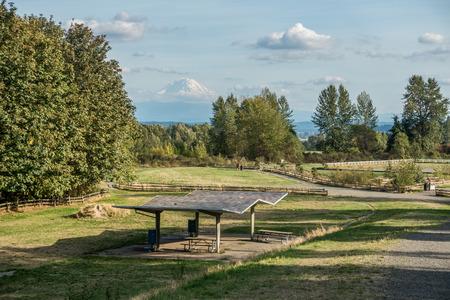 veiw: A veiw of Mount Rainier from Grandview Offleash Dog Park in Seatac, Washington.