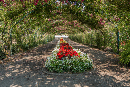 A arbor of Roses covers a center garden at Point Defiance Park in Tacoma, Washington.