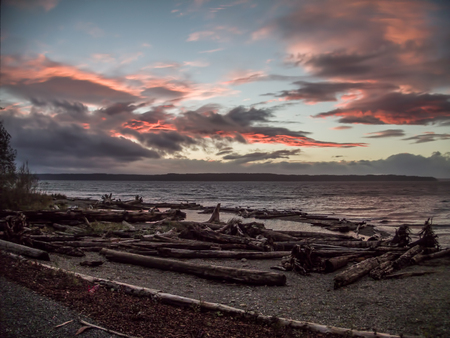 wispy: Pink wispy clouds fill the sky as the sun sets at Seahurst Park in Burien, Wahsington. Piles of logs fill the foreground.