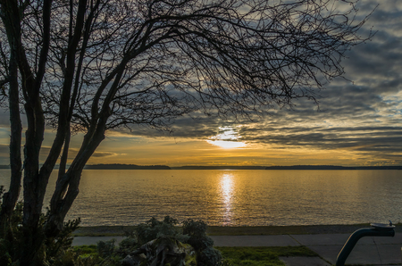 puget: A view of a yellow sunset over the Puget Sound from West Seattle.