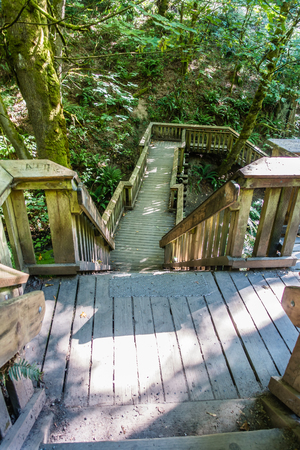 Stairs lead down to a bridge ove a stream at Saltwater State Park in Washington State.