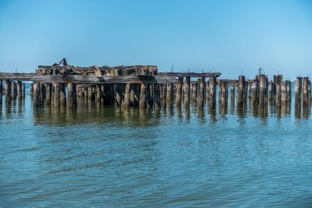 pilings: Decayed pier pilings in Runston Washington Stock Photo