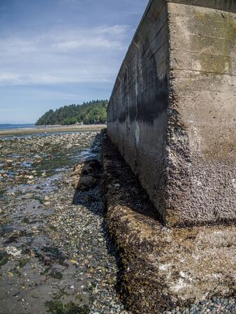 pacific northwest: Seawall at low tide in the Pacific Northwest.