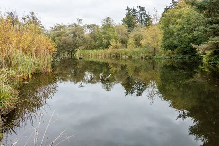 normandy: View of a pond near the shoreline in Normandy Park, Washington.