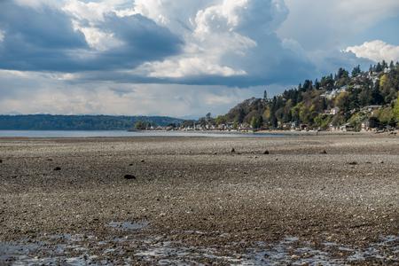 극심한 썰물은 워싱턴의 노르망디 공원에서 해저를 밝혀냅니다. 3 개의 트리 포인트가 북쪽에서 볼 수 있습니다.