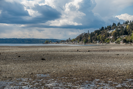 An extreme low tide reveals the seabed in Normandy Park, Washington. Three Tree Point can be seen to the north.