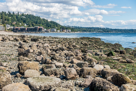 puget: The shoreline of West Seattle, Washington at low tide on a sunny day.