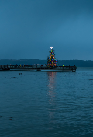 puget sound: A Xmas tree on a pier brightens up the night somewhere in the Pacific Northwest.