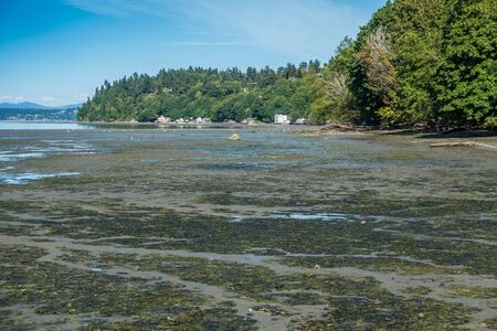 shorelines: The tide is low at Dash Point State Park in Washington State. Stock Photo