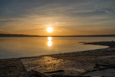 Golden luminous light envelops everything as the sun sets over the Puget Sound.