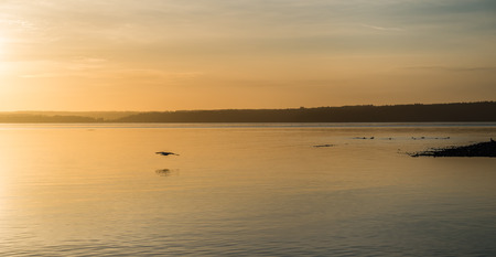 Yellow luminous light envelops everything as the sun sets over the Puget Sound. Stock fotó - 68204318