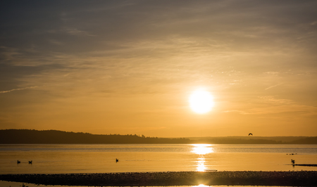 Yellow luminous light envelops everything as the sun sets over the Puget Sound.