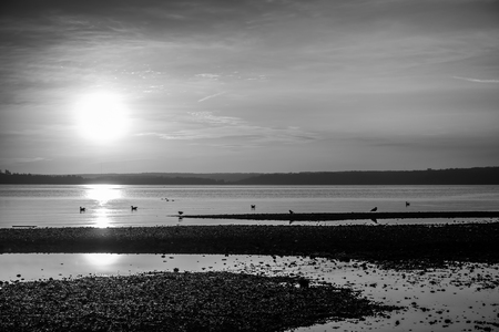 envelops: Luminous light envelops everything as the sun sets over the Puget Sound. Black and white image.