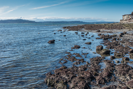 puget: The tide is low revealing the seabed in West Seattle, Washington. Stock Photo