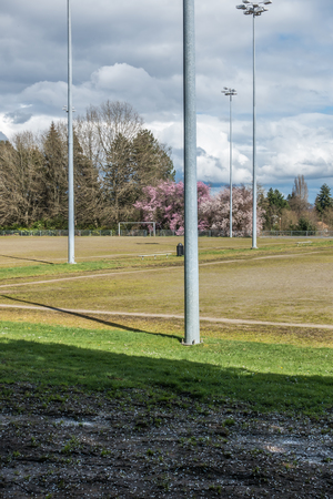 A view of a ball field and Cherry trees in Seatac, Washington. Stock Photo