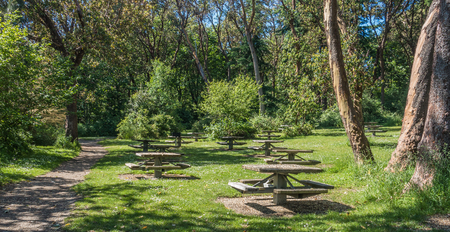 A view of picnic table at Lincoln Park in West Seattle, Washington.