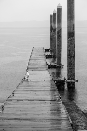 A view of a dock in Redondo Beach, Washington. It is raining. Stock fotó