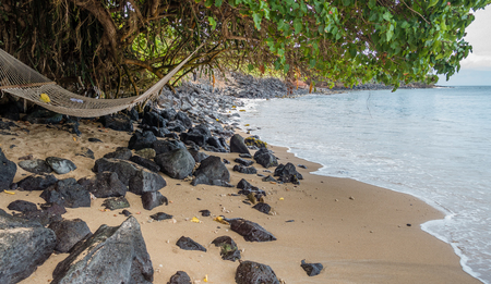 A hammock hangs from a tree on the shore in Kahana on Maui, Hawaii.
