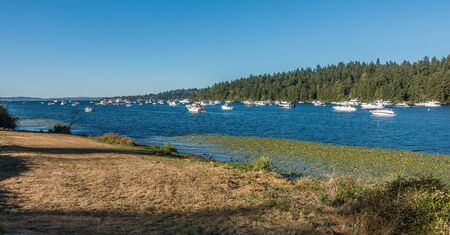 Boats are anchored on Lake Washington on a bright August day.