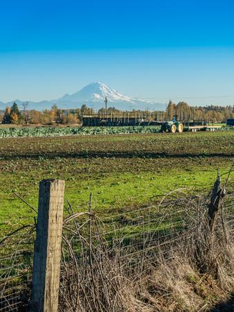 A view of farmland and Mount Rainier in Kent, Washington. Stok Fotoğraf