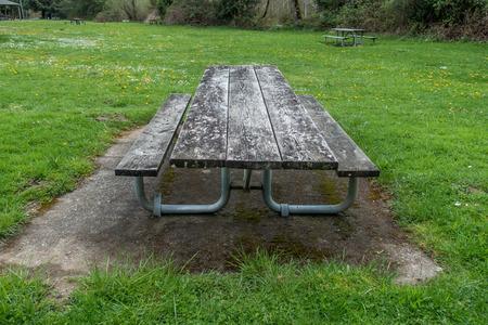 緑の草と野生の花は、ワシントン州の風化したピクニックテーブルiatフレイミングガイザーシュタイパーキを囲んでいます。 写真素材 - 99996332