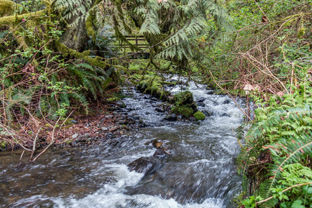 A stream rushes past a walking brdige at Flaming Geyser State Park in Washington State.