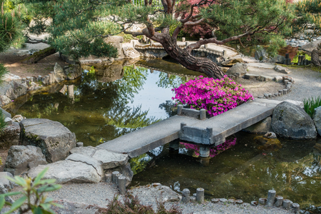 A View Of A Japanese Garden Pond And Walking Bridge In Seatac, Washington.  Stock