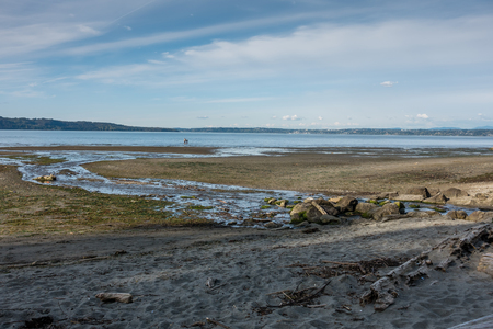 A stream flows across the shoreline and into the Puget Sound at Dash Pioint State Park in Washington State. Stock Photo