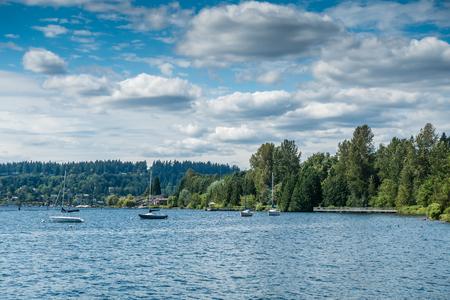 Sailboats are anchored on Lake Washington near Gene Coulon Park.