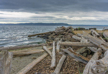 Dark storm clouds hover over the Puget Sound and drifwood lines the shore at Saltwater State Park in Washington State
