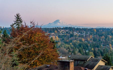 A view of Mount Rainier in the evening.