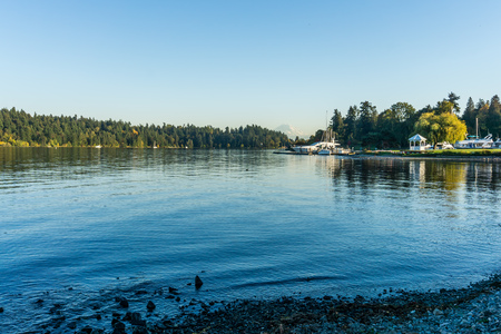 A view of the shoreline of Lake Washington with Mount Rainier in the distance.
