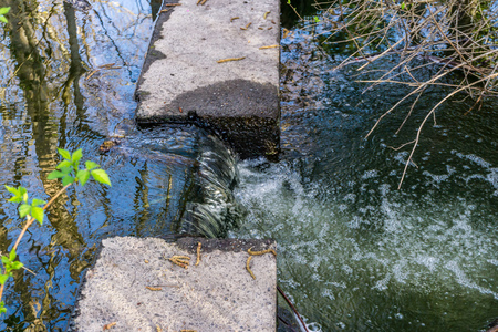 A closeup shot of a flowing creek in Normandy Park, Washington.