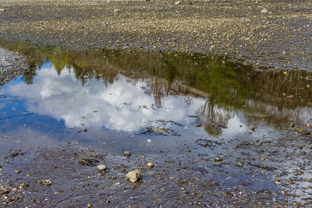 The sky is reflected in this tide pool in Des Moines, Washington.