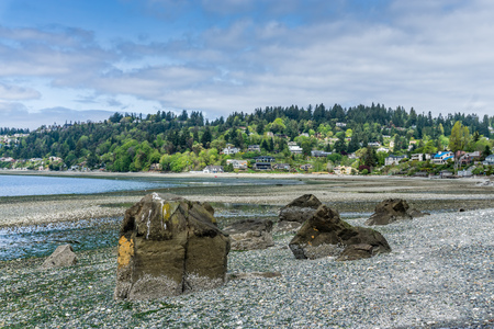 The tide is very low on an sunny day in Normandy Park, Washington.