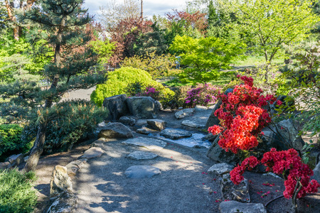 A view of a path and a garden in Seatac, Washington.