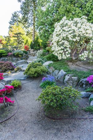 A view of stairs and flowers in a garden in Seatac, Washington. 版權商用圖片
