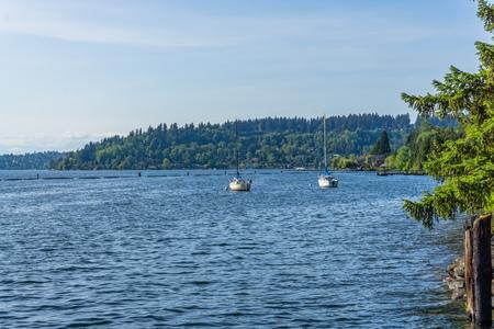 Sailboats are anchored on Lake Washington in Renton, Washington. Reklamní fotografie