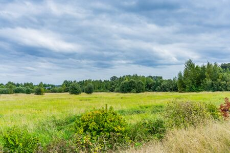 Clouds hover over a lush field in Kent, Washington.