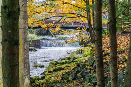 a view of a bridge and river at Tumwater Falls Park in Washington State.