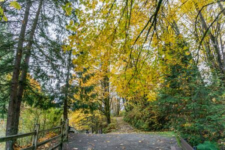 A trail at Tumwater Falls Park in Washington State. It is autumn. Stock fotó