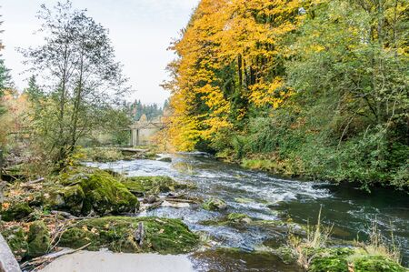 A view of autumn leaves and a bridge at Tumwater Falls Park in Washington State. Stock fotó