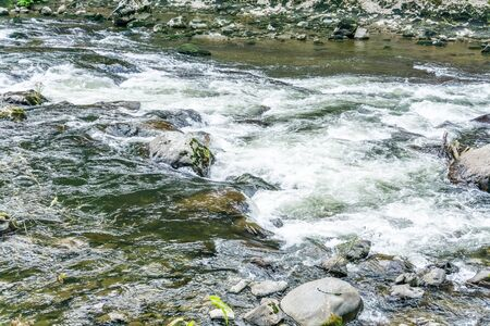 Whitewater rapids on the Snoqualmie River in Washington State.