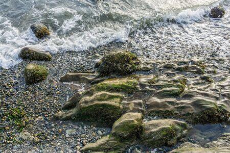 Rocky shoreline in West Seattle, Washington.