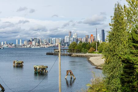 A view of a wharf and the Seattle skyline.