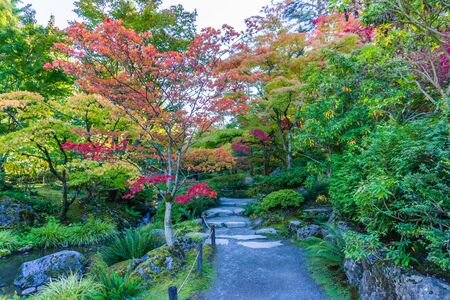 A view of a garden walkway with autumn colors in Seattle, Washington. 写真素材