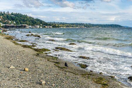 Waves roll toward the West Seattle shoreline.
