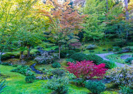 A garden with stream in Seattle, Washington. It is autumn.