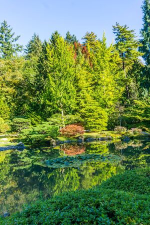 A view of a pond and foliage at a Seattle garend in autumn.